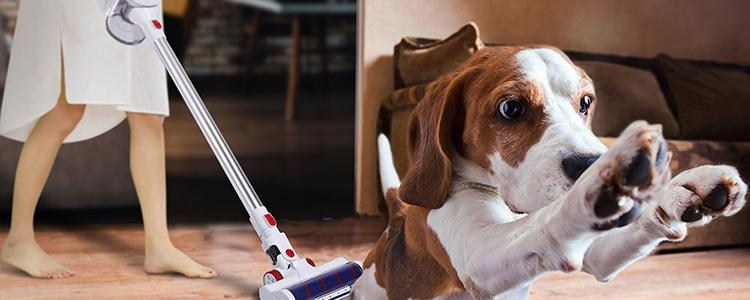 Instead of Struggling to Clean, Use Alfawise AR182BLDC 18kPa Cordless Stick Vacuum Cleaner, You'll Be Thankful for It